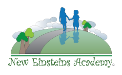 NEW EINSTEINS ACADEMY