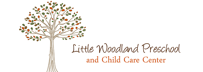 Little Woodland Preschool And Child Care Center
