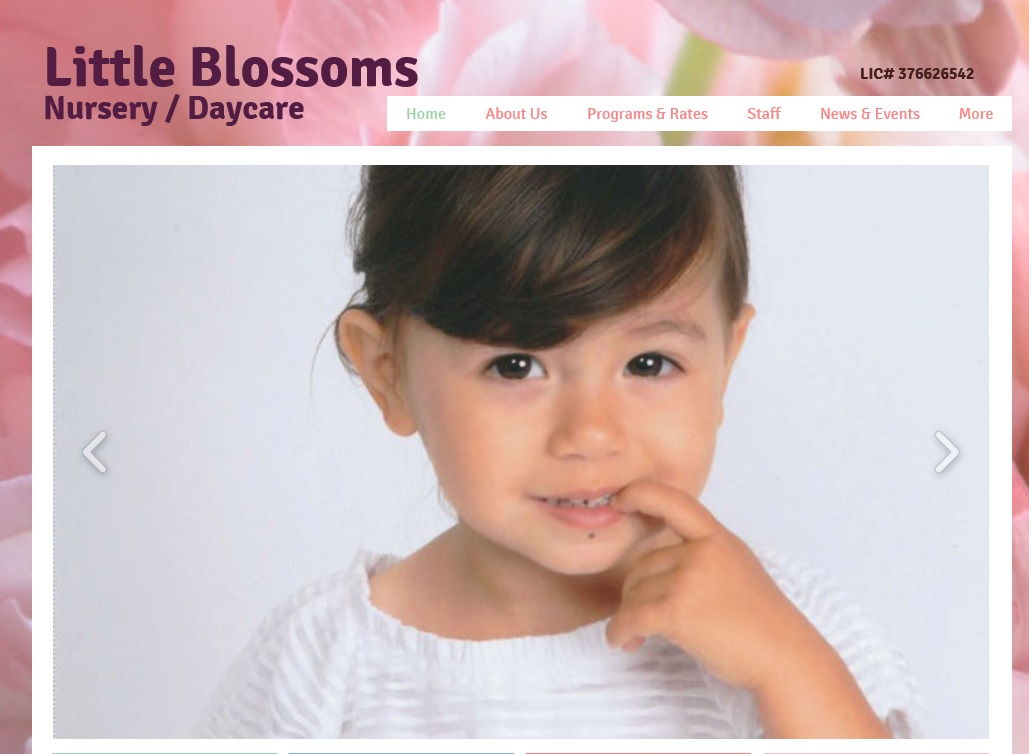 Little Blossoms Nursery/Daycare