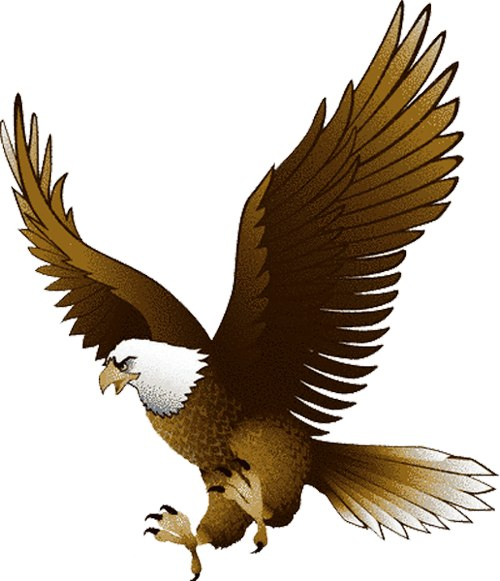 flying eagle clip art - photo #27