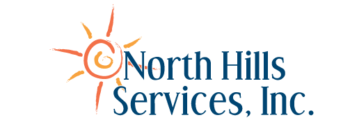 NORTH HILLS SERVICES INC