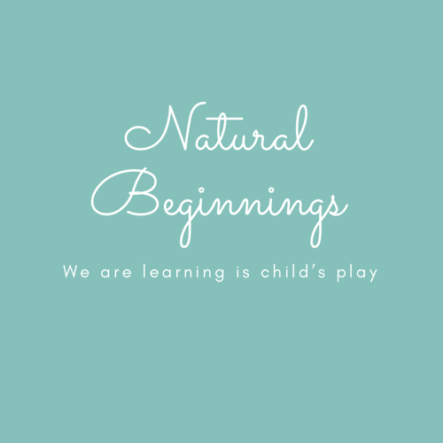 Ambers Natural Beginnings Home Childcare