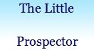 THE LITTLE PROSPECTOR