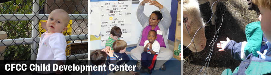 CAPE FEAR COMM COLLEGE CHILD CARE DEV CENTER