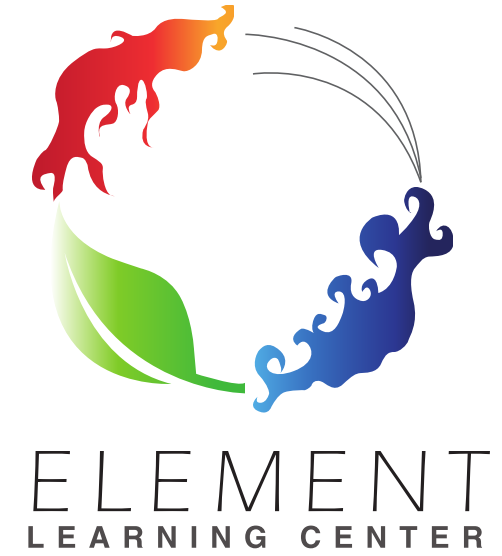 ELEMENT LEARNING CENTER  owned by THELMA M SIMS