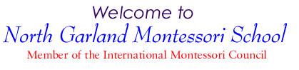 Texas Peak Performance Group dba North Garland Montessori Sc