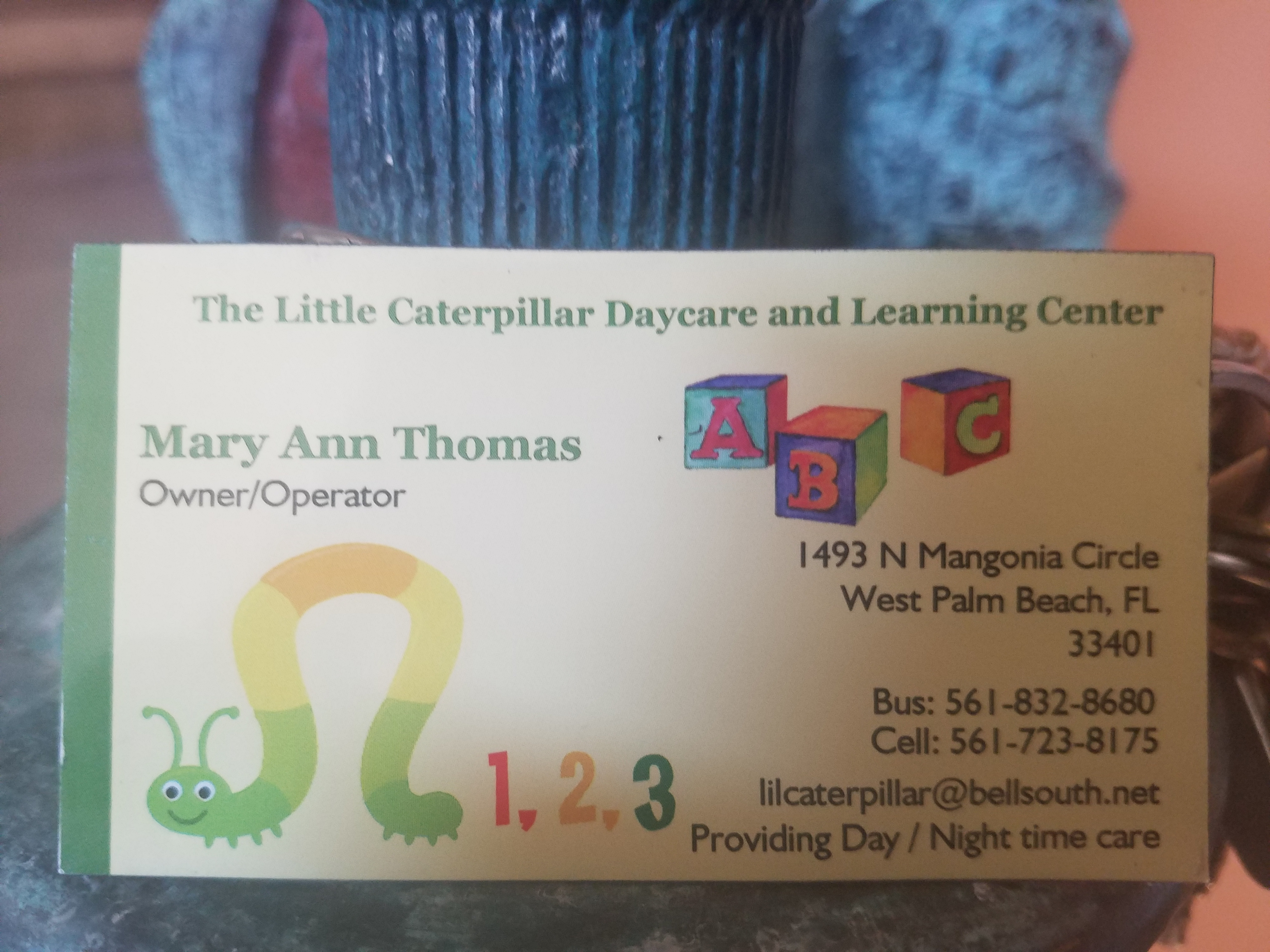 THE LITTLE CATEPILLAR DAY CARE AND LEARNING CENTER