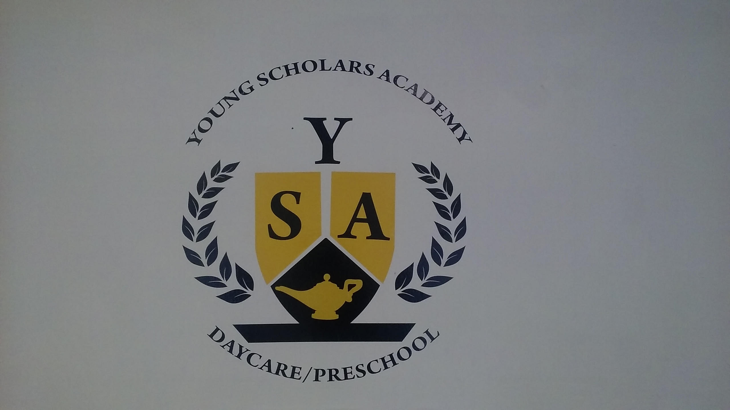 Young Scholars Academy LLC