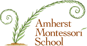 Amherst Montessori School